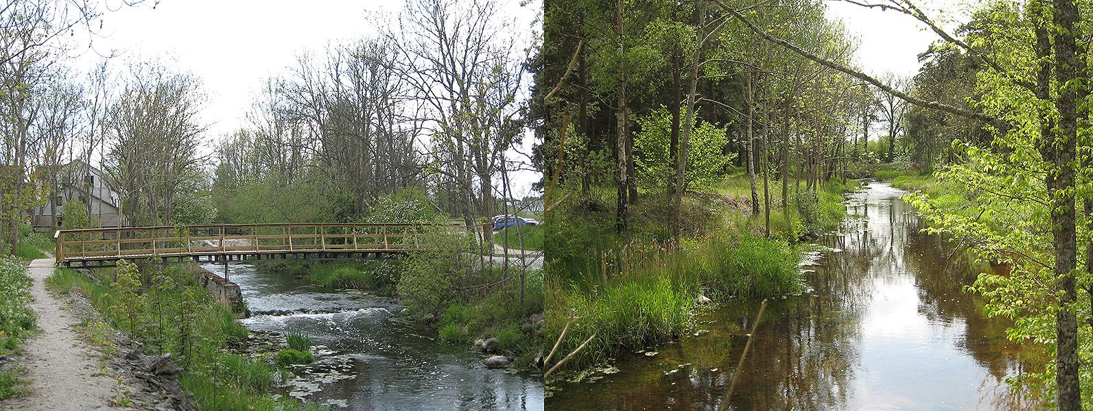 Till vänster: 2008 byggdes gångbron vid kvarndammen i Dalhem. Till höger: Vy av ån längs med vandringsleden. Foto: 2008
